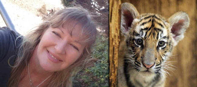 Sybelle Foxcroft Cee4life Encounter with Mark Ulyseas Live Encounters Magazine May 2014