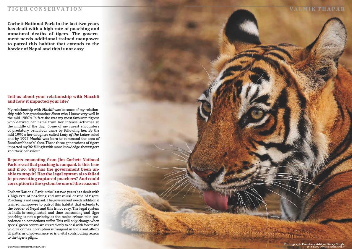 Valmik Thapar Guardian of the Tiger - Page 02