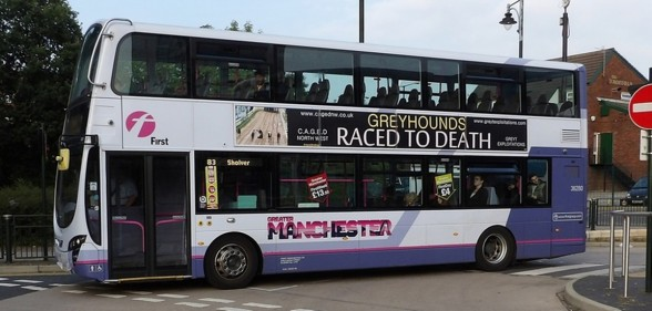 Raced to death bus sticker