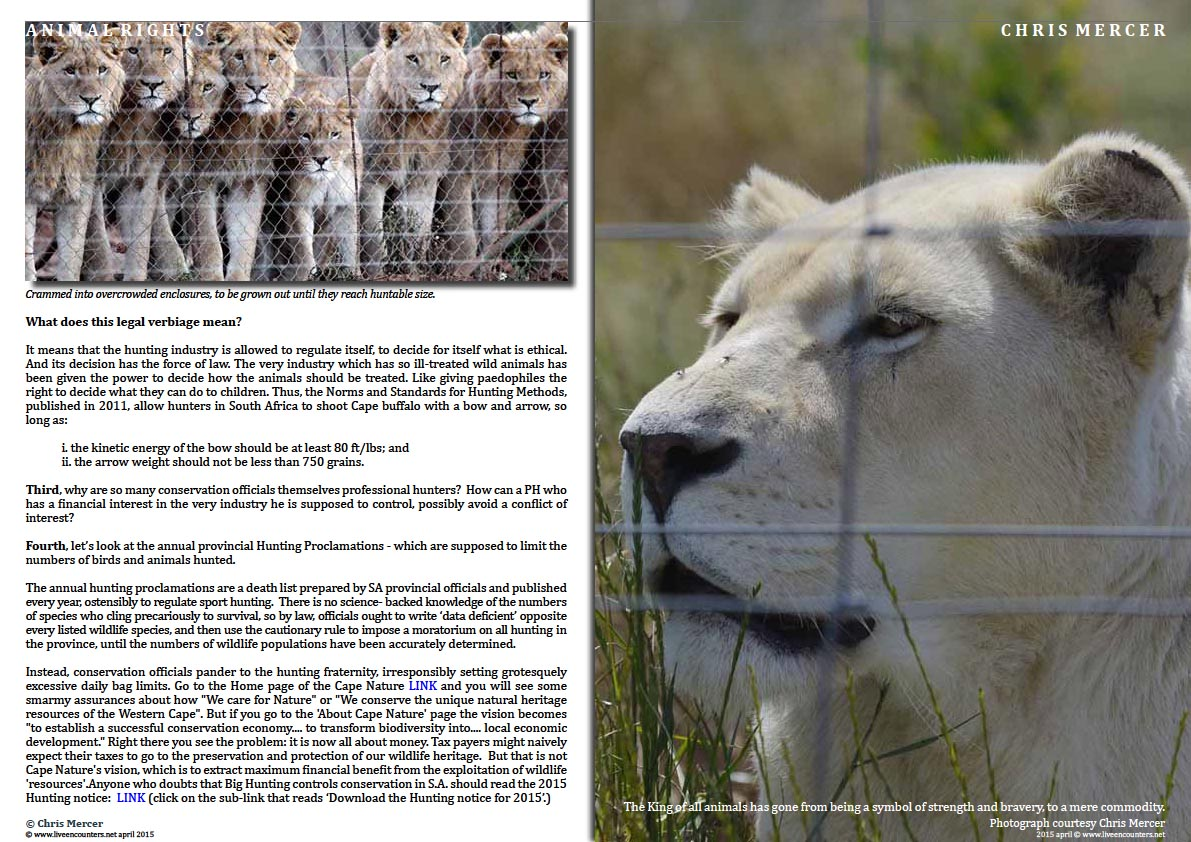Page Three Chris Mercer on Canned Lion hunting and Regulatory Capture Live Encounters Magazine April 2015