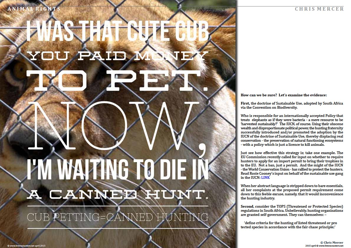 Page Two Chris Mercer on Canned Lion hunting and Regulatory Capture Live Encounters Magazine April 2015