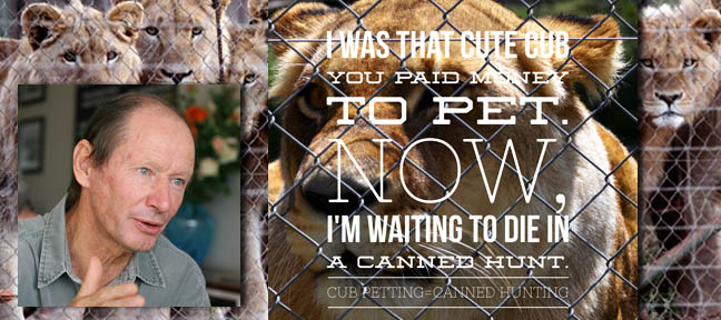 Profile Chris Mercer on Canned Lion hunting and Regulatory Capture Live Encounters Magazine April 2015