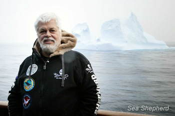 Captain Paul Watson of Sea Shepherd Conservation Society