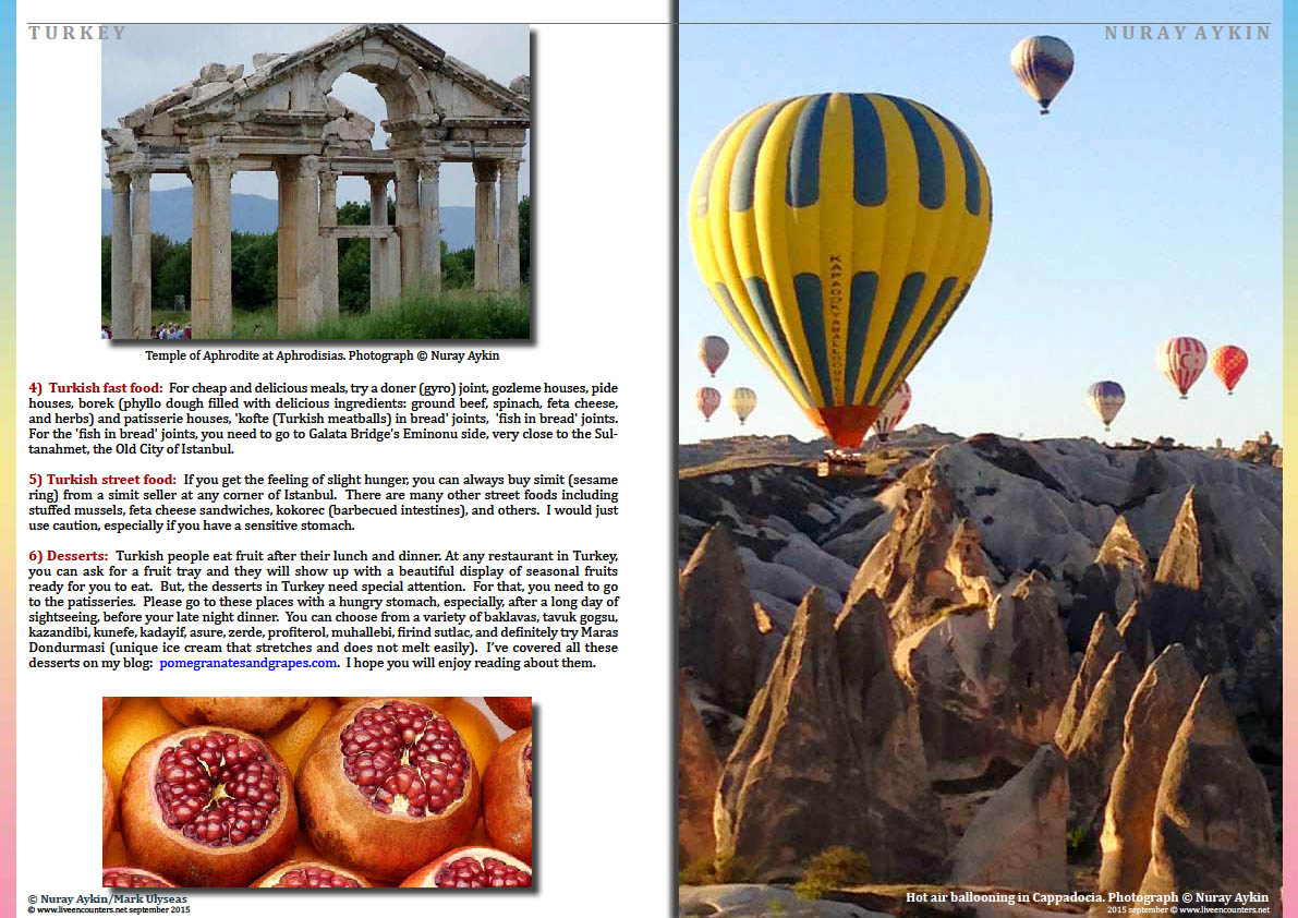 Page Six Dr Nuray Aykin author of Pomegranates and Grapes: Landscapes from My Childhood in an exclusive interview with Mark Ulyseas Live Encounters Magazine September 2015