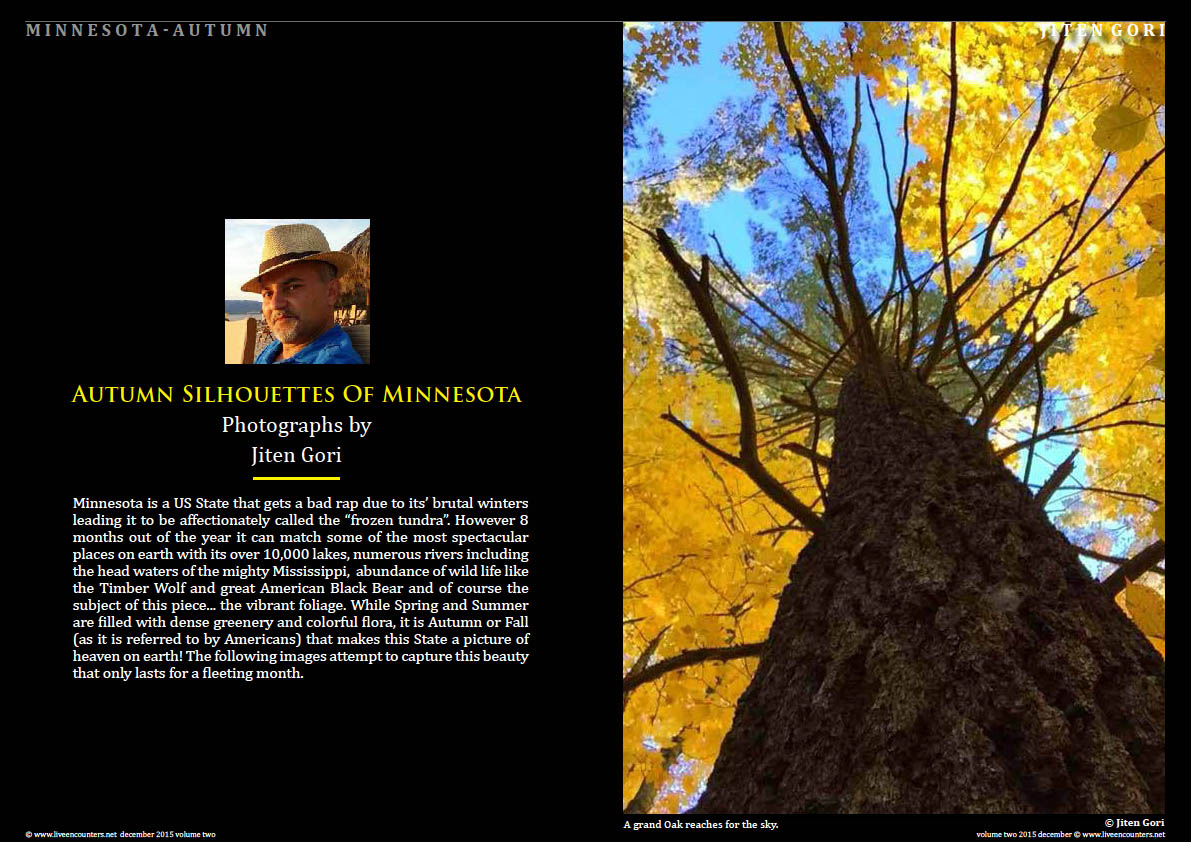 Live Encounters Magazine Jiten Gori Autumn Silhouettes of Minnesota Volume Two December 2015 Page 01
