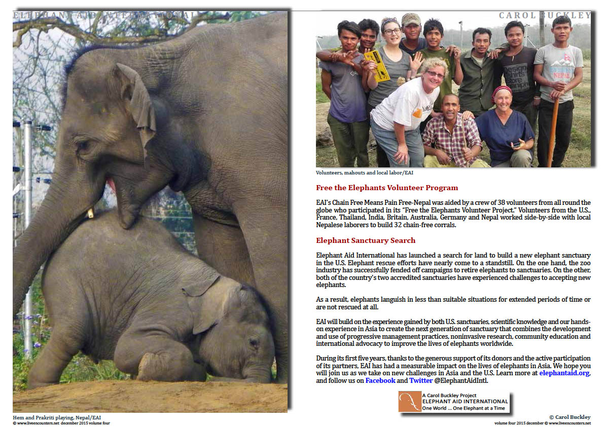 Live Encounters Magazine Carol Buckley Elephant Aid International Continues our Transformative Work in Asia Volume Four December 2015  Page 06
