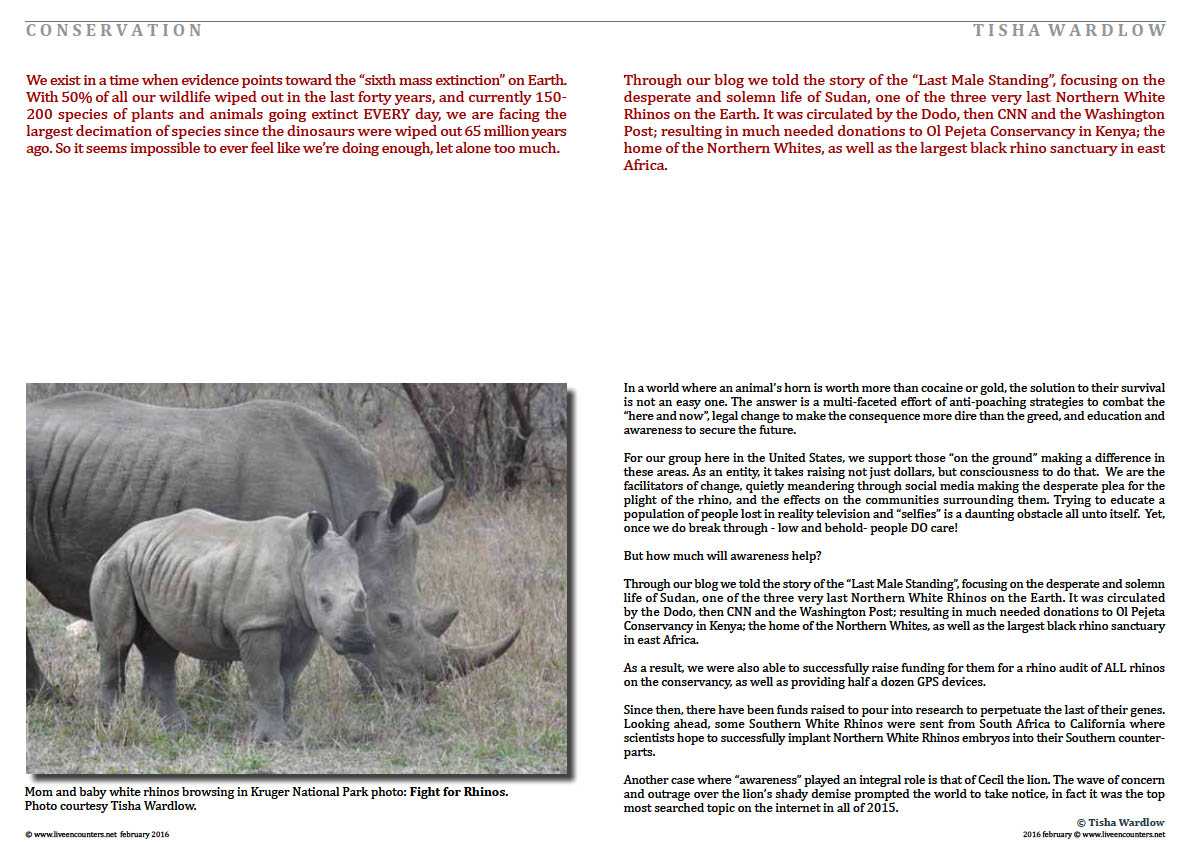 Page 2 Making Rhinos Count in a World of Indifference by Tisha Wardlow Live Encounters Magazine February 2016