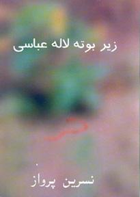 Nasrin Parvaz Farsi