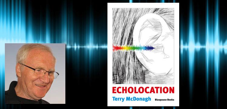 Profile Terry McDonagh - Echolocation: A Few Poems for Young People