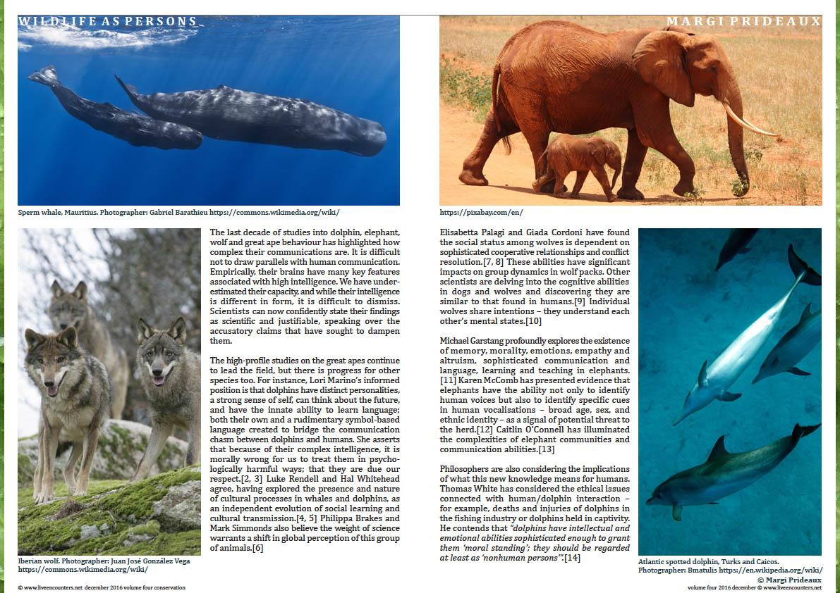 2-margi-prideaux-live-encounters-conservation-december-2016