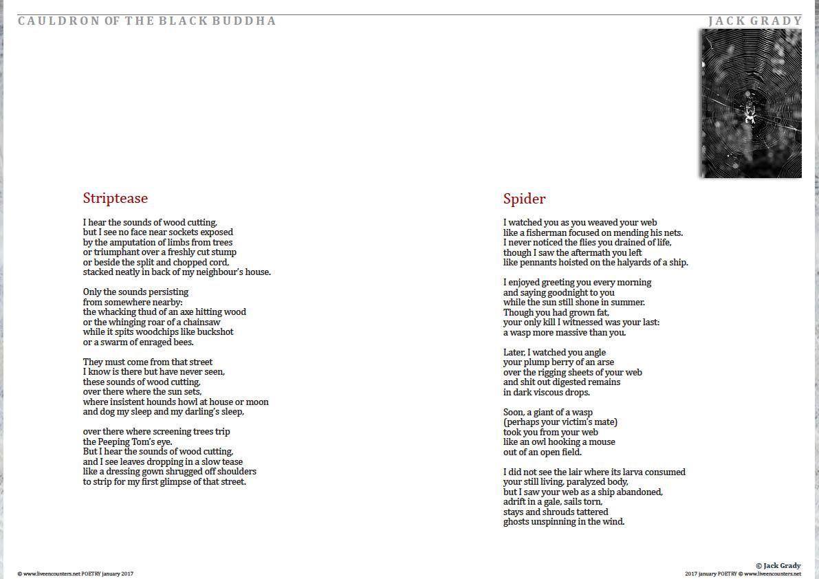 2-jack-gradyle-poetry-january-2017