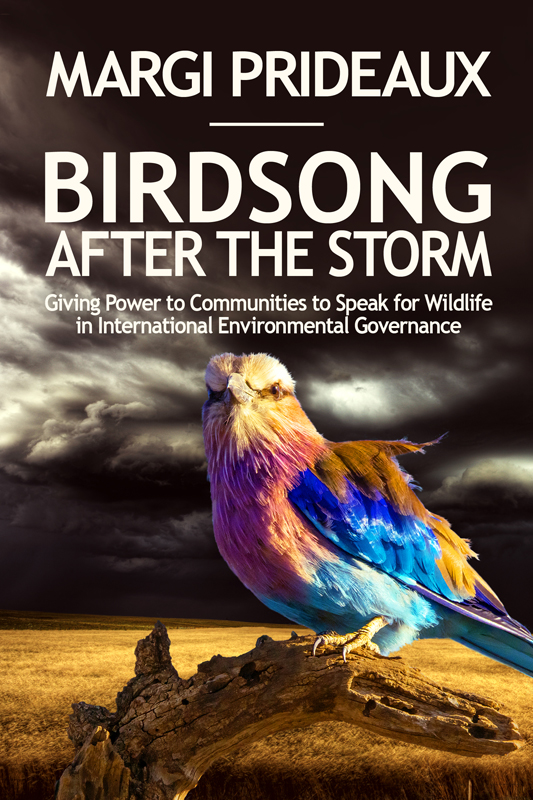 BirdsongAfterTheStorm copy