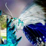 Profile FB Dr Candess M Campbell Live Encounters Magazine October 2017