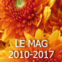 LE Mag December 8th anniversary 2017