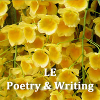 LE Poetry & Writing April 2018