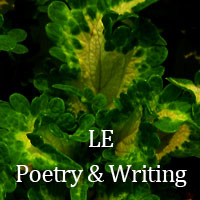 LE Poetry & Writing July 2018