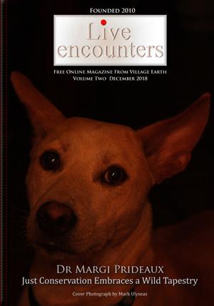 LE Mag Vol Two Dec 2018 PDF