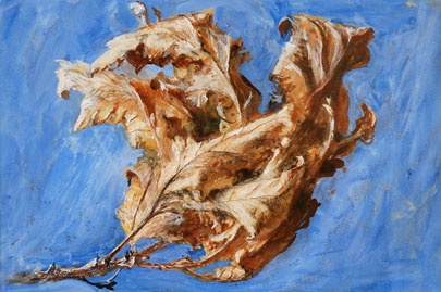 'Study of Spray of Dead Oak Leaves' (1879) John Ruskin.