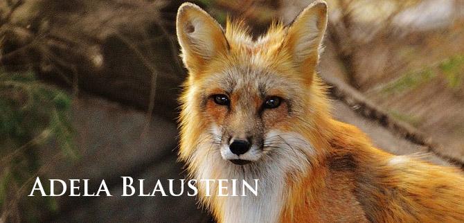 Profile Adela Blaustein LE Child Mag July 2019