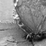 Profile Elsa Korneti LE P&W March 2020