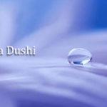 Profile Ledia Dushi LE P&W March 2020