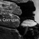 Corrigan LE P&W April 2020