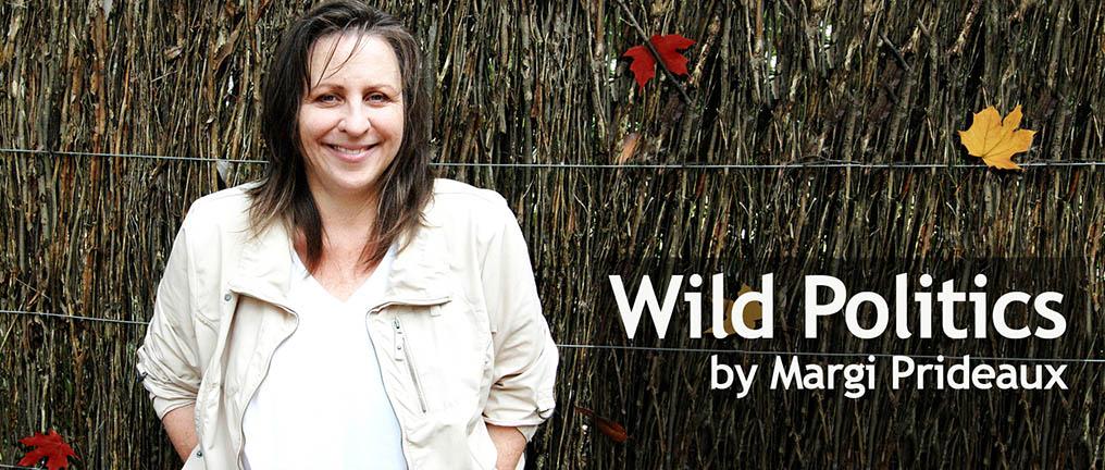 Dr Margi Prideaux Wild Politics