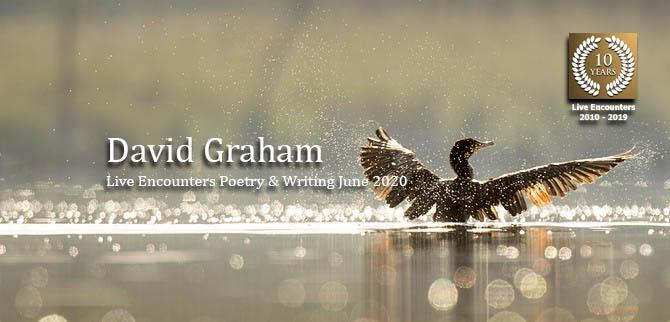 Davidgraham profile