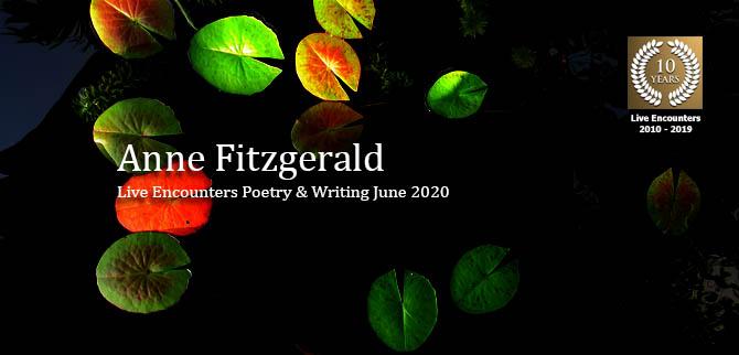 Fitzgerald profile