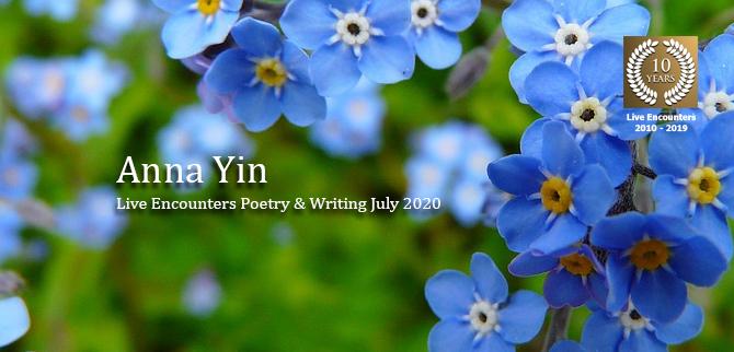 Yin profile