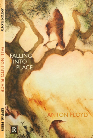 Falling into Place by Anton Floyd