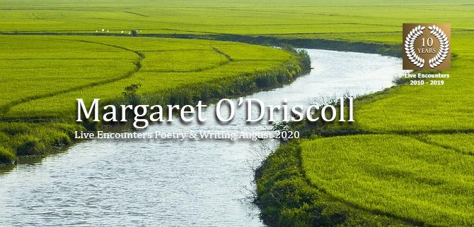 O Driscoll profile