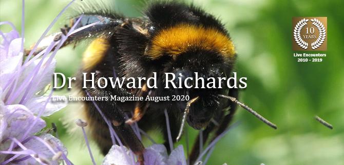 Richards Profile LE Mag