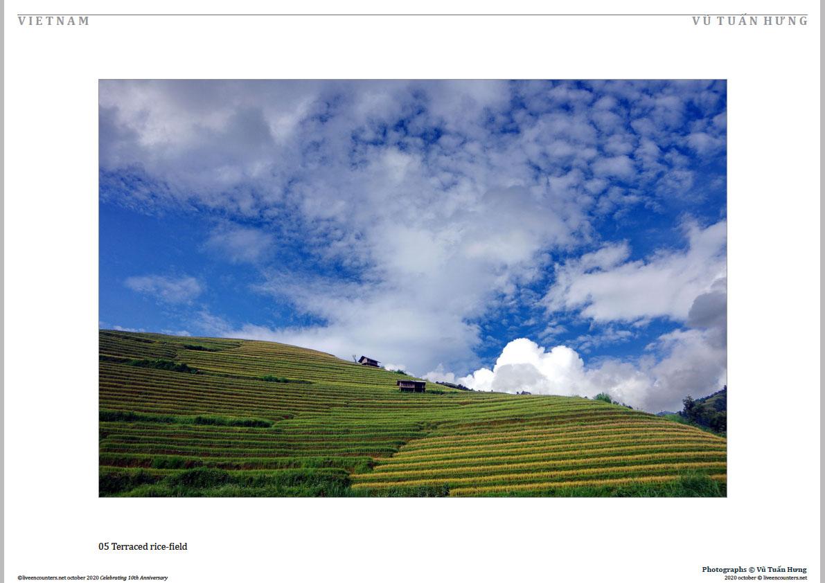 05 Vu Tuan Hung Oct 2020