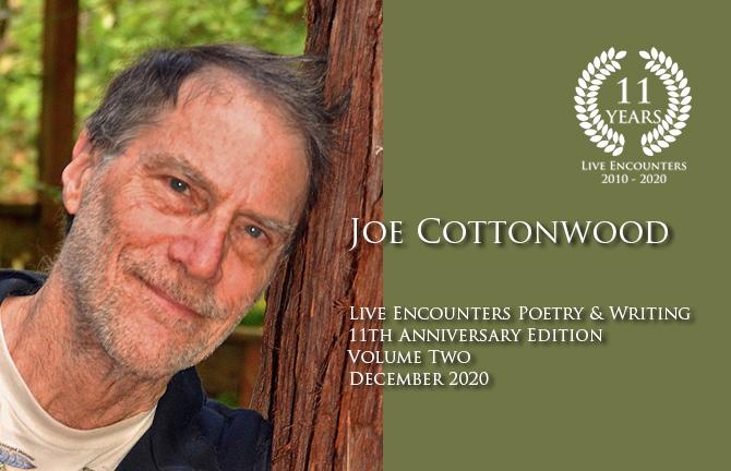 Cottonwood profile Dec 2020