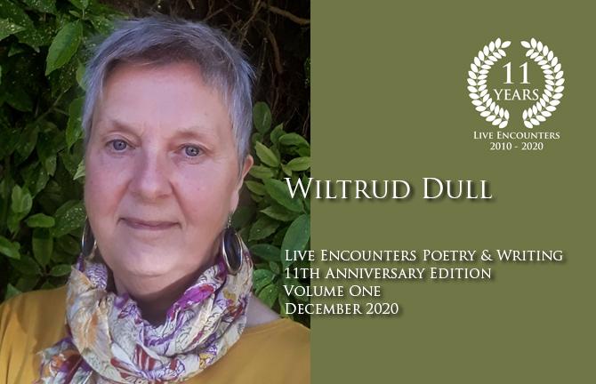 Dull profile Dec 2020