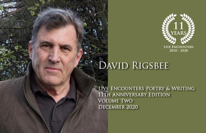 Rigsbee profile Dec 2020