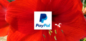 Donate to LE by Paypal