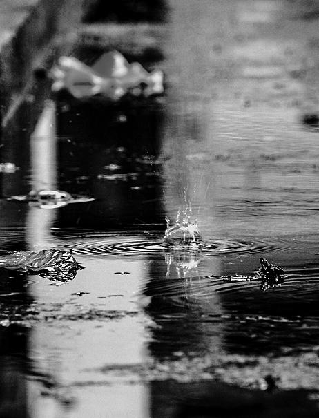 Photo credit Vishal Joshi - unsplash
