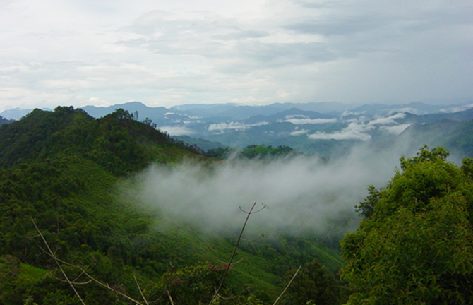 The mist in the mountains photograph by Percy Aaron